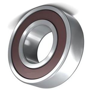 Auto Spare Part Deep Groove Ball Bearing 6300 6301 6302 6303 6304 6305 6306 6307 6308 6309 6310 2RS RS Zz 2z C3 for Agriculture/Machinery/Motorcycle/Car Parts