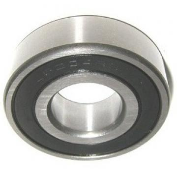 Inch Series Nu Type Double Row Cylindrical Roller Bearing