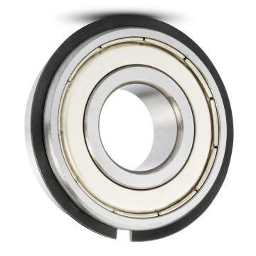 SKF NTN Koyo NSK Cylindrical Roller Bearing SL183004