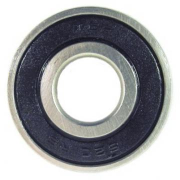 SKF NSK NTN Koyo Cylindrical Roller Bearings Np322m1
